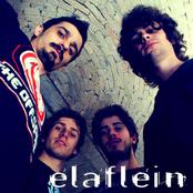 elaflein