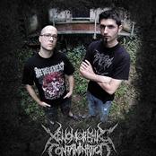 Xenomorphic Contamination